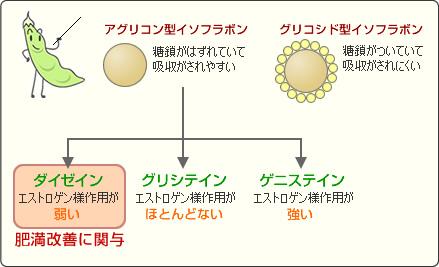 3種類のイソフラボン