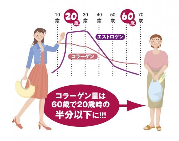 エストロゲンの分泌の推移